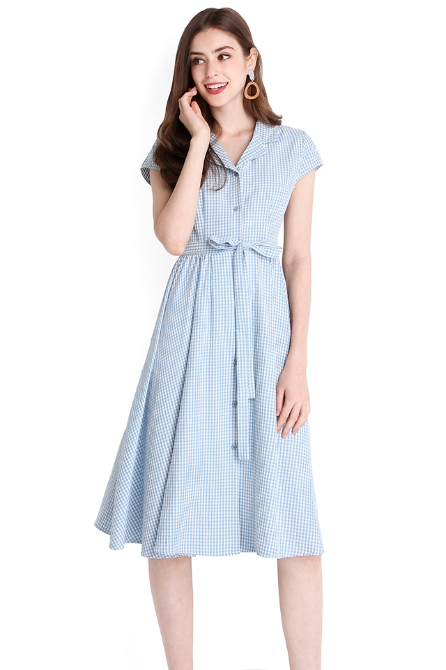 Perfect Fairytale Dress In Blue Checks