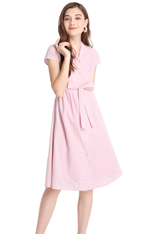 Perfect Fairytale Dress In Pink Checks