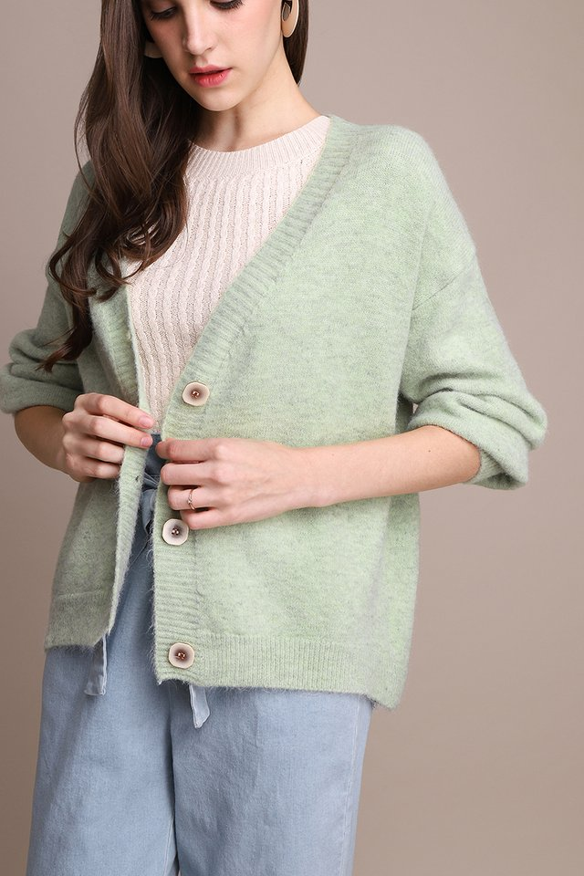 Winter Warmth Cardigan In Mint