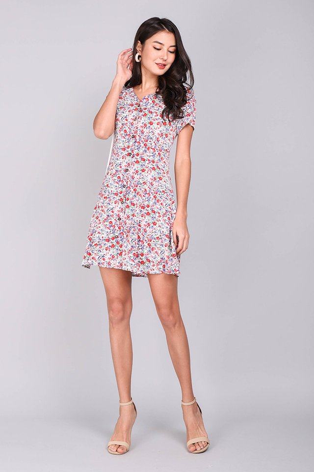 Little Italy Dress In Garden Florals
